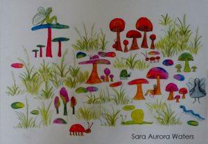 Mushroom forest-Sara-Aurora-Waters-2015